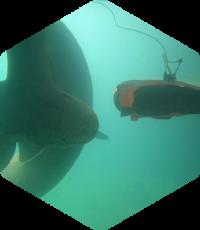 Inspection de coque de bateau automatisée-Drone sous-marin Seasam-Notilo Plus