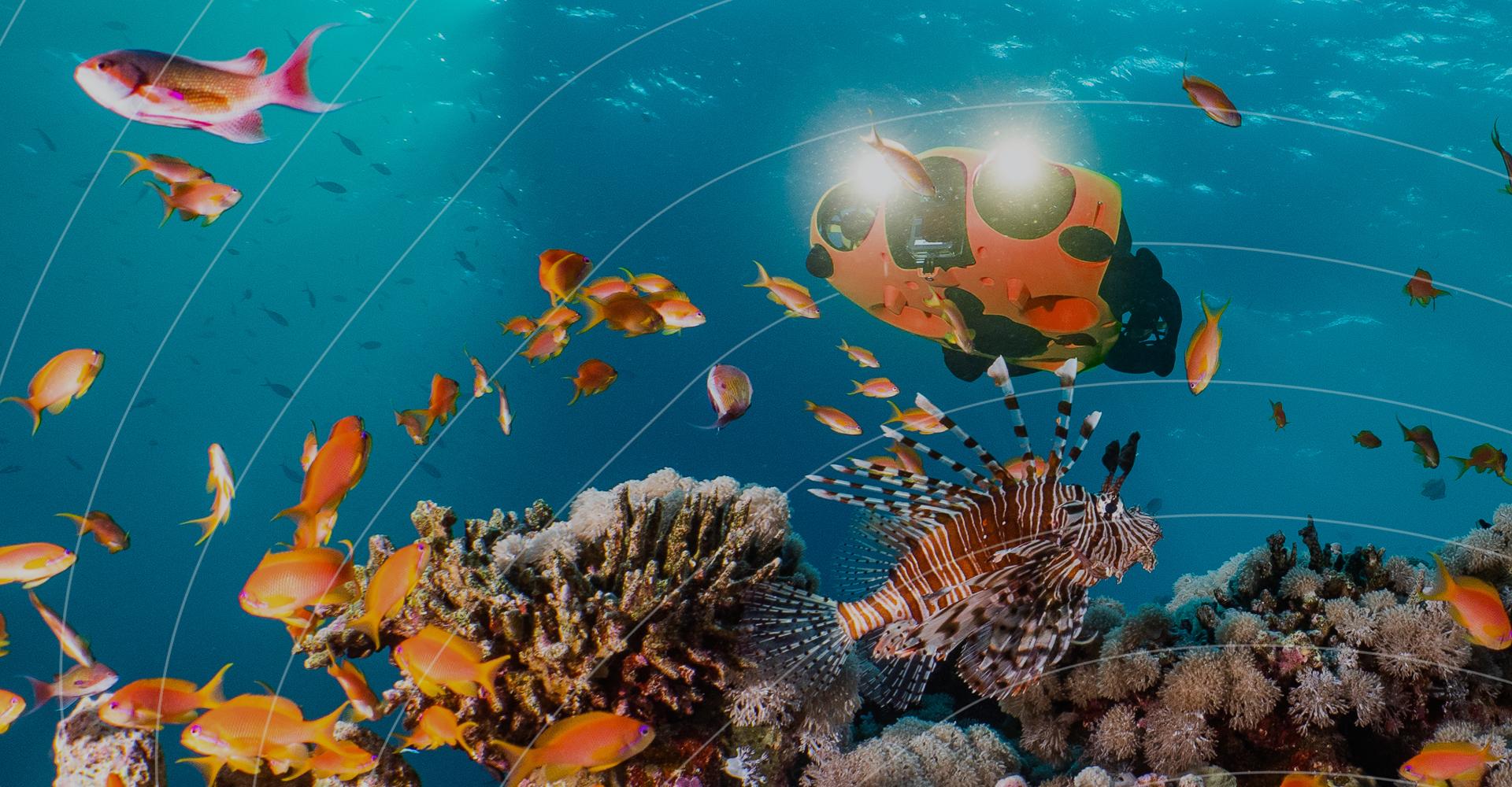 Inspection écosystème aquatique - Avec le drone sous-marin Seasam-Notilo Plus